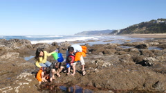 Family at beach looking at tidepool Stock Footage