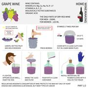 Stock Illustration of Home winemaking. Wine from grapes. Infographics.