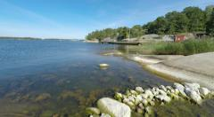 View of shore on typical Stockholm archipelago island Stock Footage