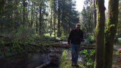 Backpacker walking in forest Stock Footage