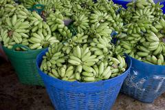 Many green bananas in basket ready to sell in market Stock Photos