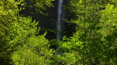 Waterfall framed by trees, Columbia River Gorge, Oregon Stock Footage