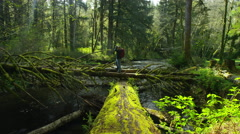 Backpaker taking photos in forest, Oregon Stock Footage