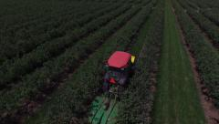 Aerial view of tractor mowing and spraying blueberry field - stock footage