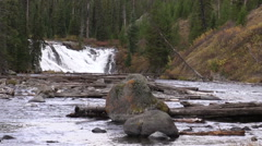 Lewis Falls Along the Scenic Lewis River in Yellowstone National Park Stock Footage