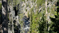 Yellowstone National Park, River Stock Footage