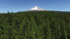 Aerial shot of forest and Mt. Hood, Oregon - stock footage