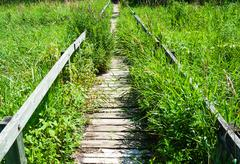 Overgrown long wooden boardwalk Stock Photos