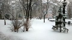Snowfall in park. Stock Footage