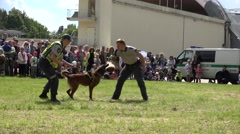 Policemen in uniform show trained dog attack for people audience. 4K Stock Footage