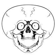 screaming skull - stock illustration