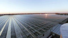 Reflection in glass roof beams large greenhouses Stock Footage