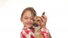 Kid and dog on white background Stock Footage