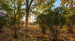 Indian summer in Kiev at sunset Stock Footage