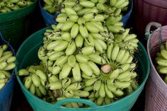 Green banana bundle in basket ready to sell - stock photo