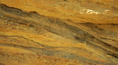 Dinosaur bones bone in dirt rock paleontology - stock footage