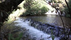 Water threshold in the park Stock Footage