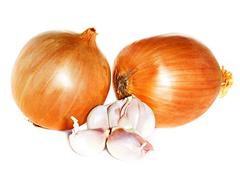 Garlic and onion isolated on white background Stock Photos