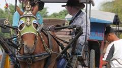 Tourist in horse cart,Borobodur,Java,Indonesia Stock Footage