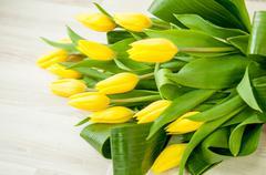 Romantic flower bucket background Stock Photos