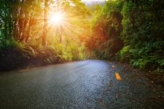 sun light in moisture mountain rain forest perspective asphalt road - stock photo