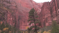 Camera pans down revealing the tall vertical walls of Zion National Park Stock Footage