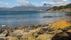 Lapataia bay in National Park Tierra del Fuego - stock footage