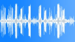 Stock Sound Effects of Dolphins talking