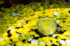 Tighten draw water small leaves floating in Water mixed with perfume And vivi - stock photo