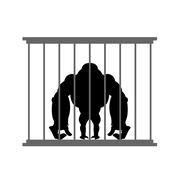 Stock Illustration of Gorilla in cage. Animal in  Zoo behind bars. Big and strong monkey in captivi
