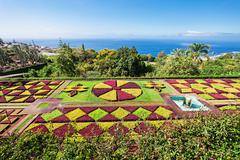 Botanical Gardens Madeira - stock photo