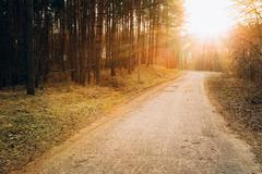 Sun shining over road, path, walkway through forest. Sunset Sunr Stock Photos