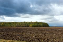 a plowed field near the forest - stock photo
