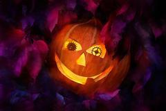 Pumpkin  paint Stock Illustration