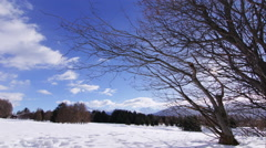 4K Winter timelapses - Beautiful nature Stock Footage