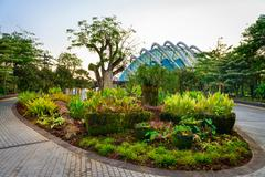 Tropical park and modern glass dome building - stock photo