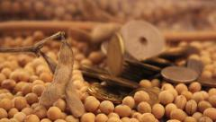Coins drop on soybeans plate - stock footage