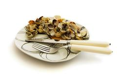 Empty dish of clams and cockles shellfish Stock Photos