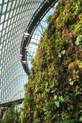 Enormous Greenhouse with Plants Growing from an Artificial Cliff Face Stock Photos