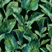 Stock Illustration of Watercolor Seamless Background with Tropical Leaves