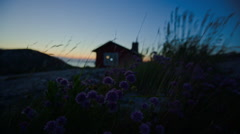 Stockholm archipelago, Sweden. Flowers and grass in front of cabin - stock footage