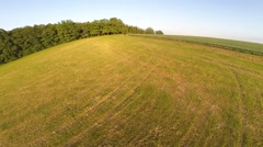 Drone flying over the autumn field Stock Footage