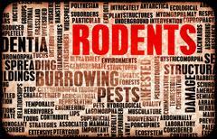 Rodents - stock illustration