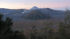Stock Video Footage of Bromo volcano with trees at sunrise,Bromo,Java,Indonesia