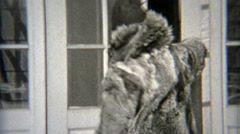 1938: Young girl wearing mom's fur coat around. Stock Footage