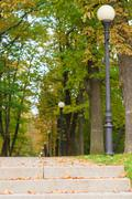 Alley with lampposts in autumn park Stock Photos