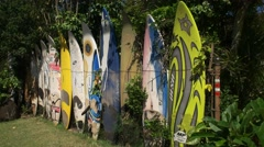 Retired windsurfing boards Stock Footage
