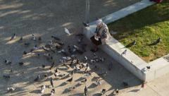 Woman feeding pigeons Stock Footage