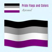 Asexual pride flag with correct color scheme. - stock illustration