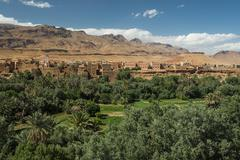 Oasis with traditional adobe houses and date palms Tinghir behind Morocco Africa Stock Photos